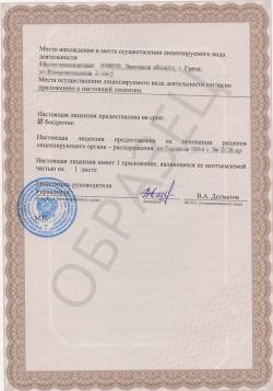 Образец лицензии на маркшейдерские работы